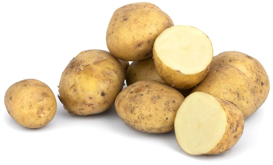 Отзывы о Картофель белый ранний
