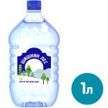 Вода Шишкин Лес питьевая негазированная 1л